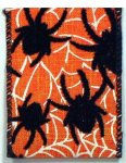"2 1/2"" Spider Web Ribbon - Wired (#90573W)"