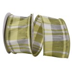 Dupioni Willow Ribbon Wire Edge